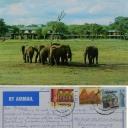 Hawanga Safari Lodge